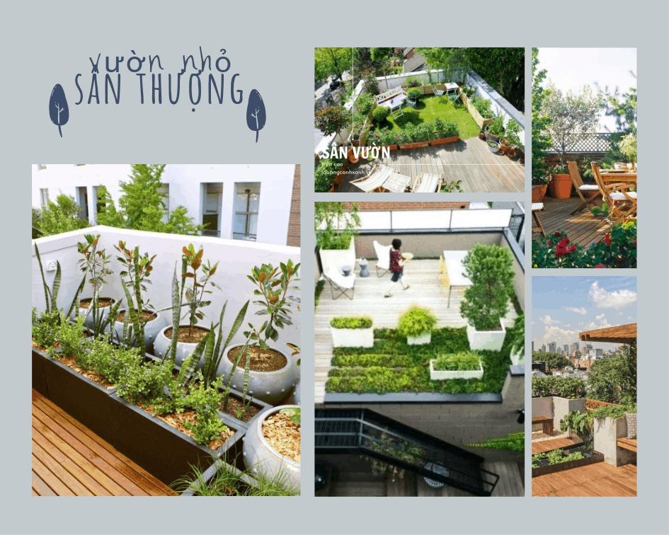 Thiết kế vườn cho sân thượng nhà phố