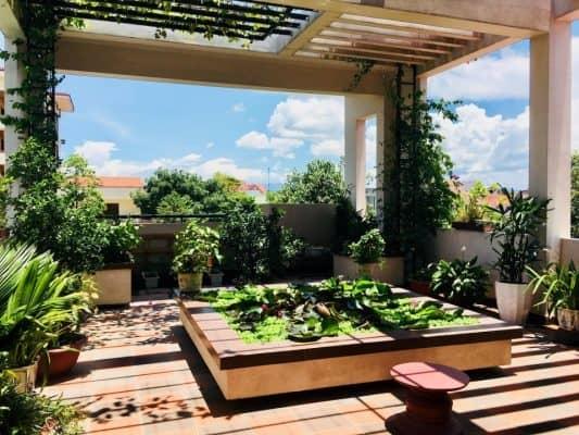 Những lưu ý khi thiết kế sân vườn trên sân thượng