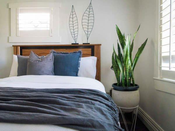 vị trí đặt cây cảnh trong nhà - phòng- ngủ